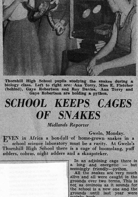 Thornhill High School Gwelo